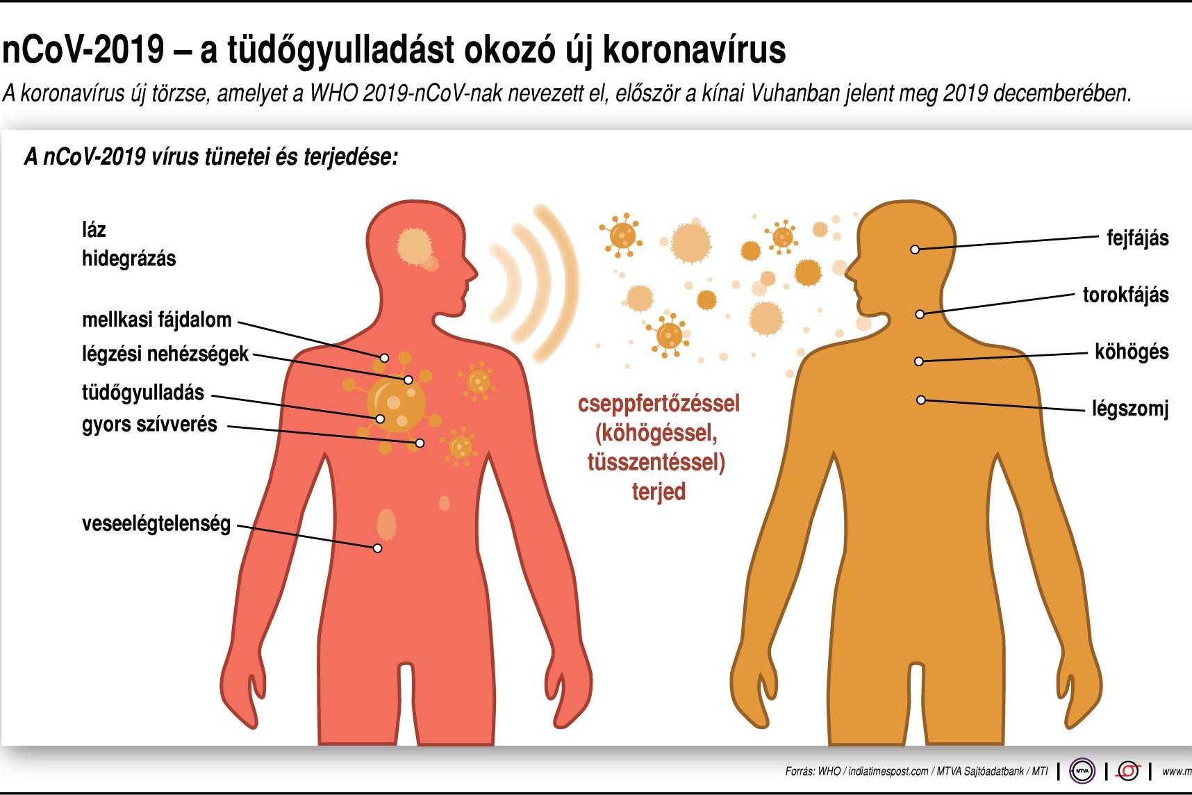 a férgek tünetei és gyógyításai)
