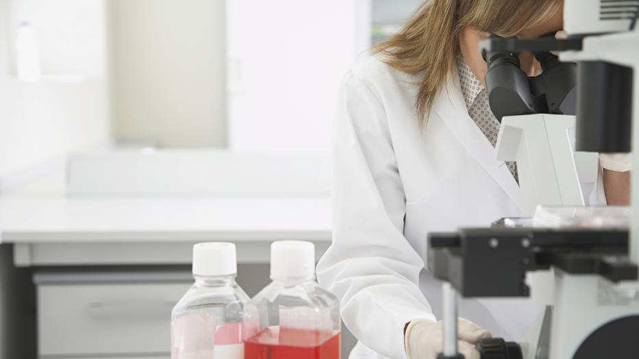 paraziták laboratóriumi kutatása)