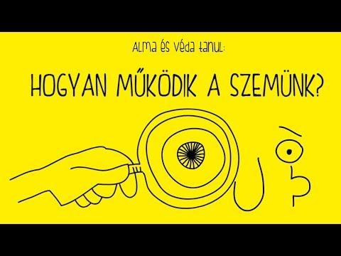 A szűrések fontossága | A Magyar Rendőrség hivatalos honlapja Védák és paraziták