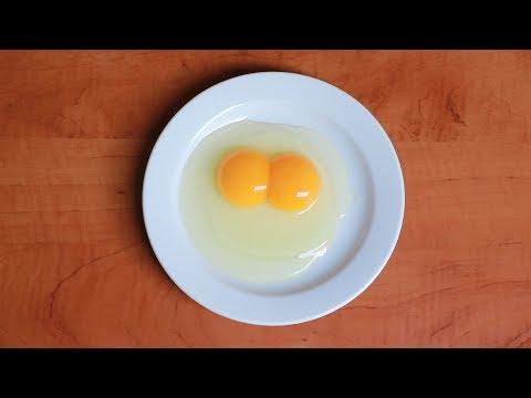 körömféreg- tojás, hogyan kell kezelni)
