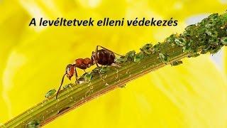 levéltetű és parazitaellenes szer)