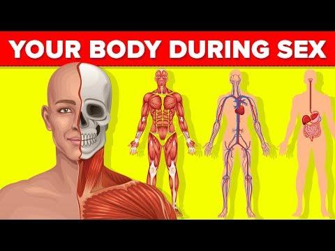 Emberi test és paraziták az emberi testben Emberi test és paraziták az emberi testben