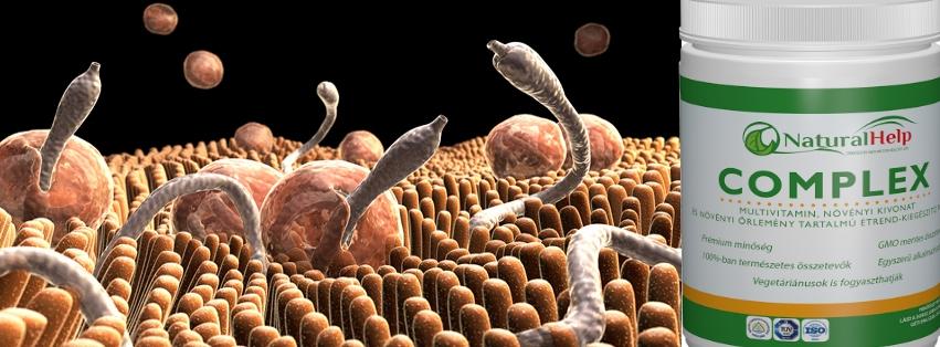 Gyógynoveny paraziták ellen