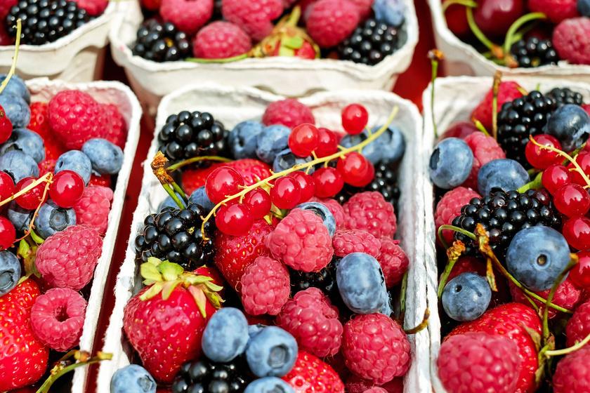 Milyen ételek szolgálhatnak forrásként az aszcariasishoz