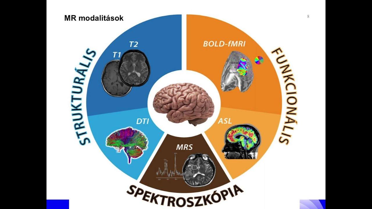 mentális állapot és helmintusok)