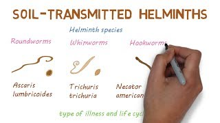 Helminthiasis megelőzése és kezelése