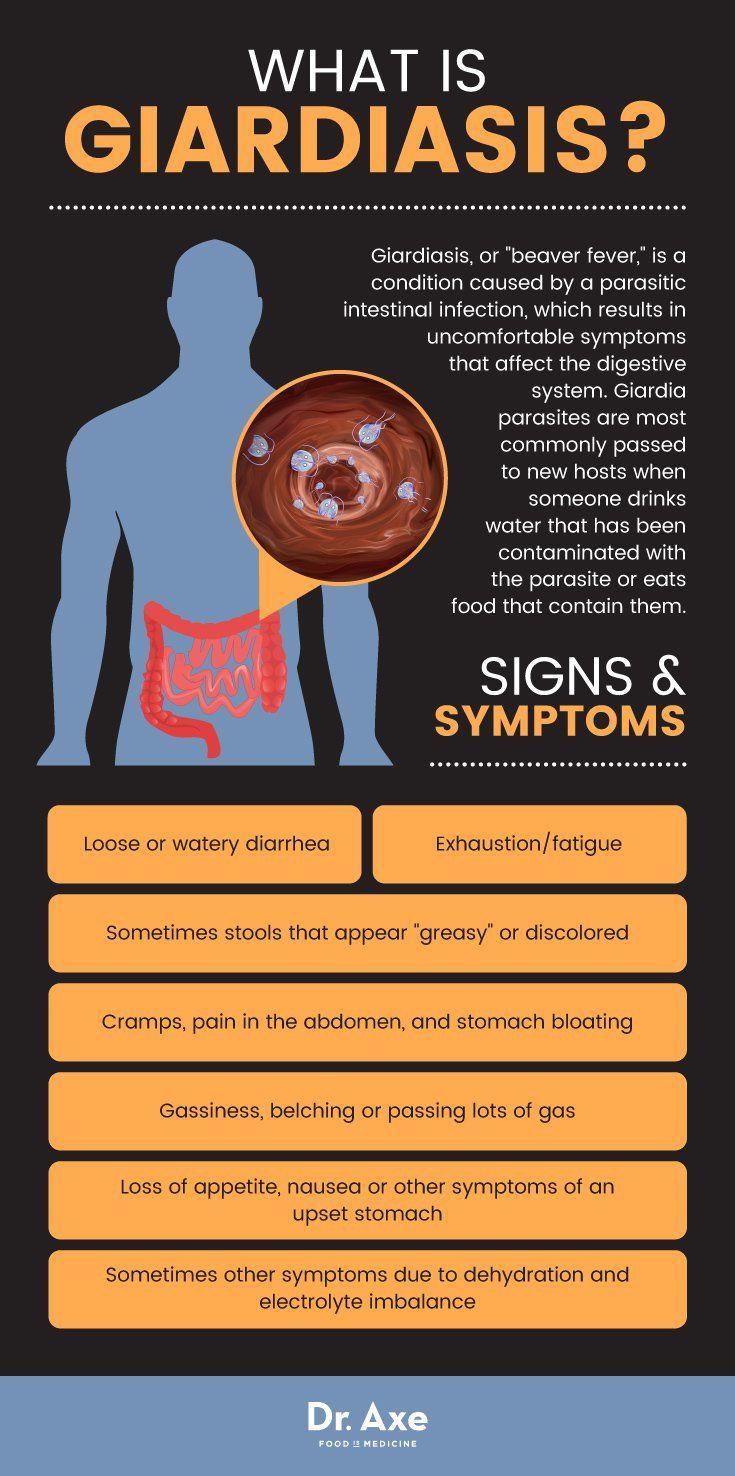 Felnőtteknél az opisthorchiasis és a giardiasis tünetei