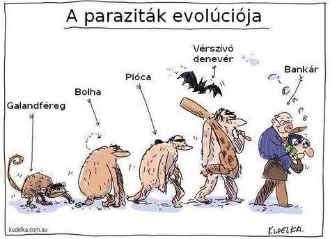 Paraziták piócákkal történő kezelése, Balatonban élnek férgek vagy paraziták? Pióca paraziták
