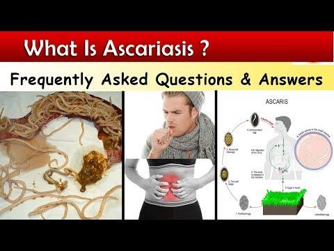 felnőttkori ascaris elleni gyógyszeres kezelés)