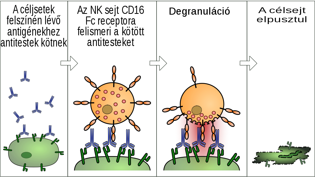 a paraziták szénanáthát okoznak versek a parazitákról