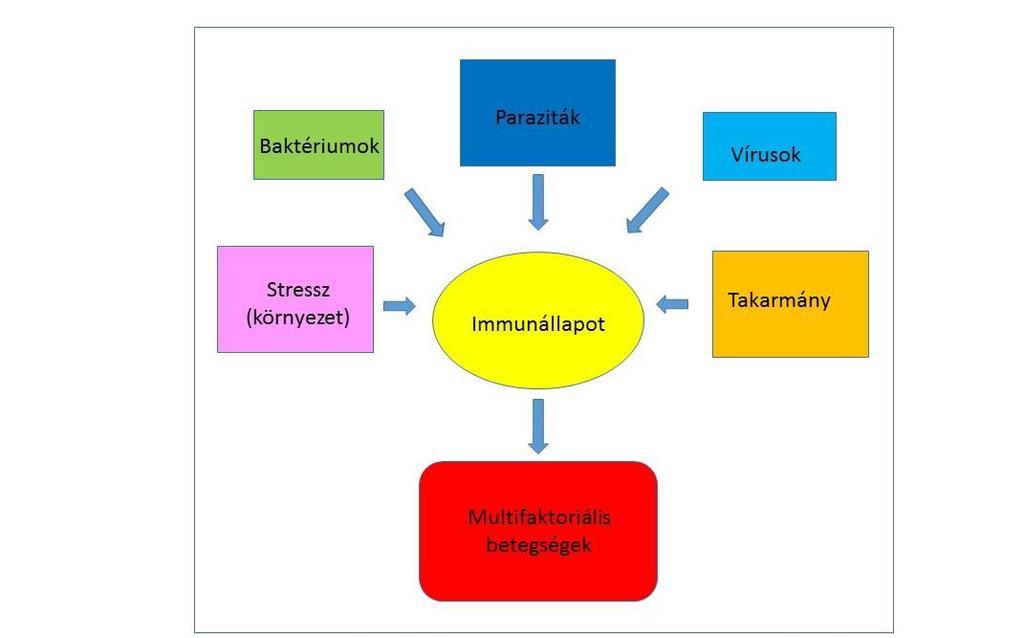 egészségügyi garancia a parazitáktól és vegyszerektől történő tisztításra