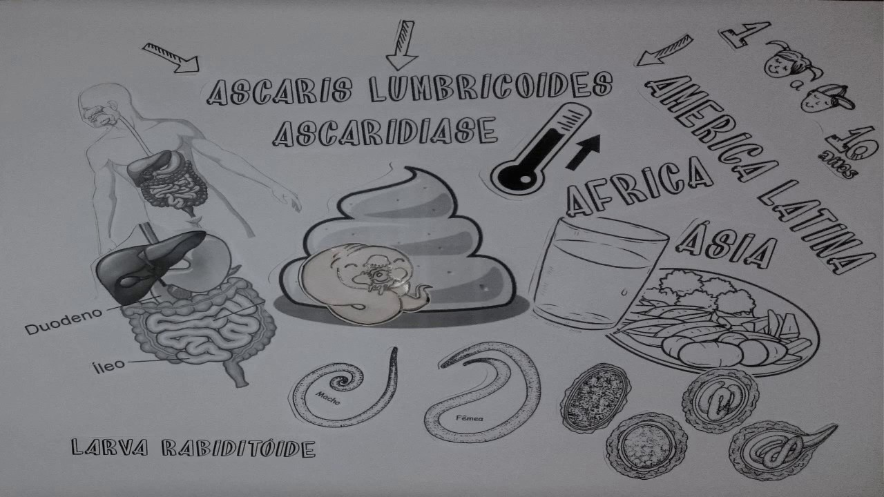 ascariasis irányelvek paraziták, amelyek lázat okoznak