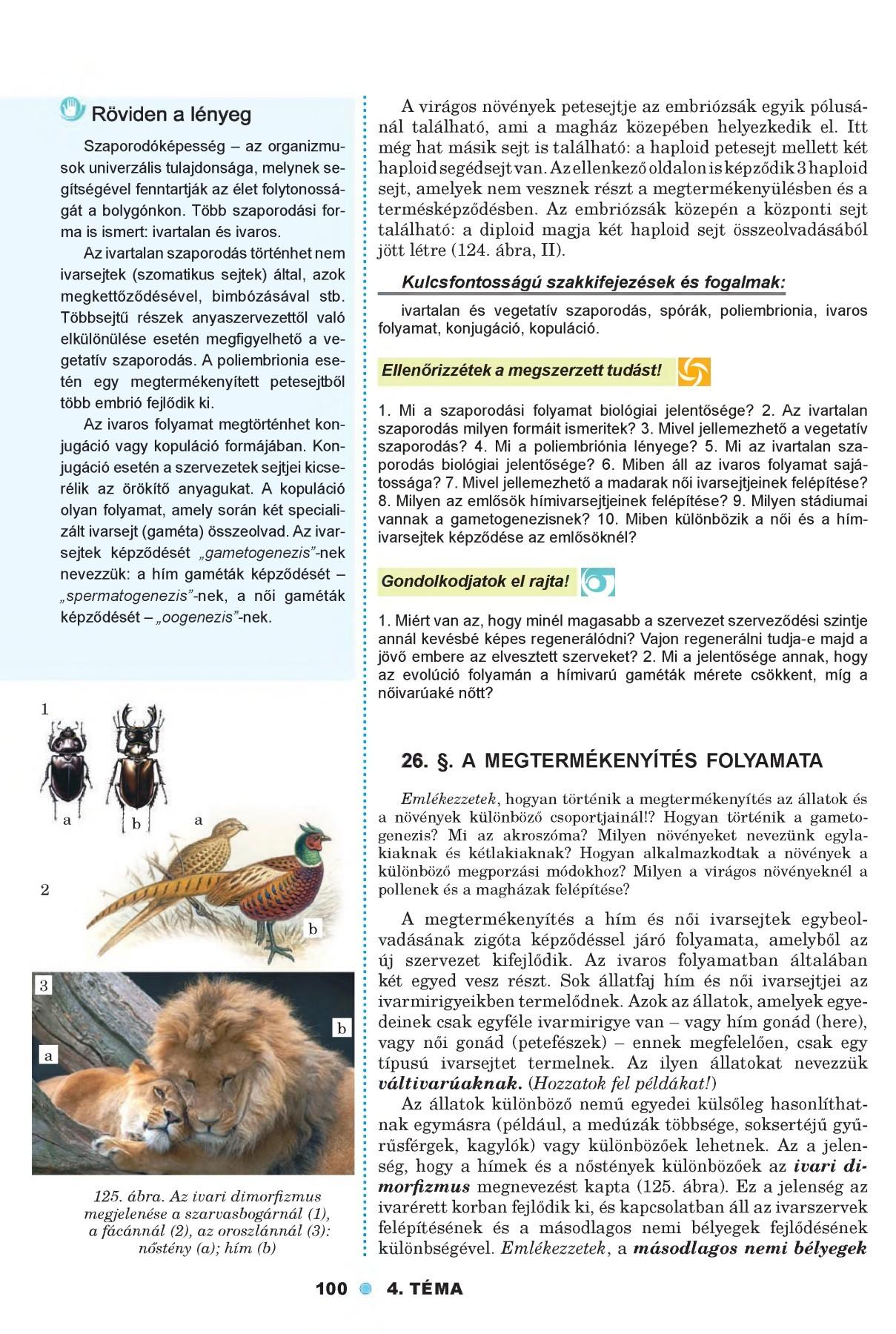 petesejtek és paraziták felnőttei
