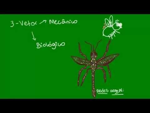 a chaga parazita vagy sem)