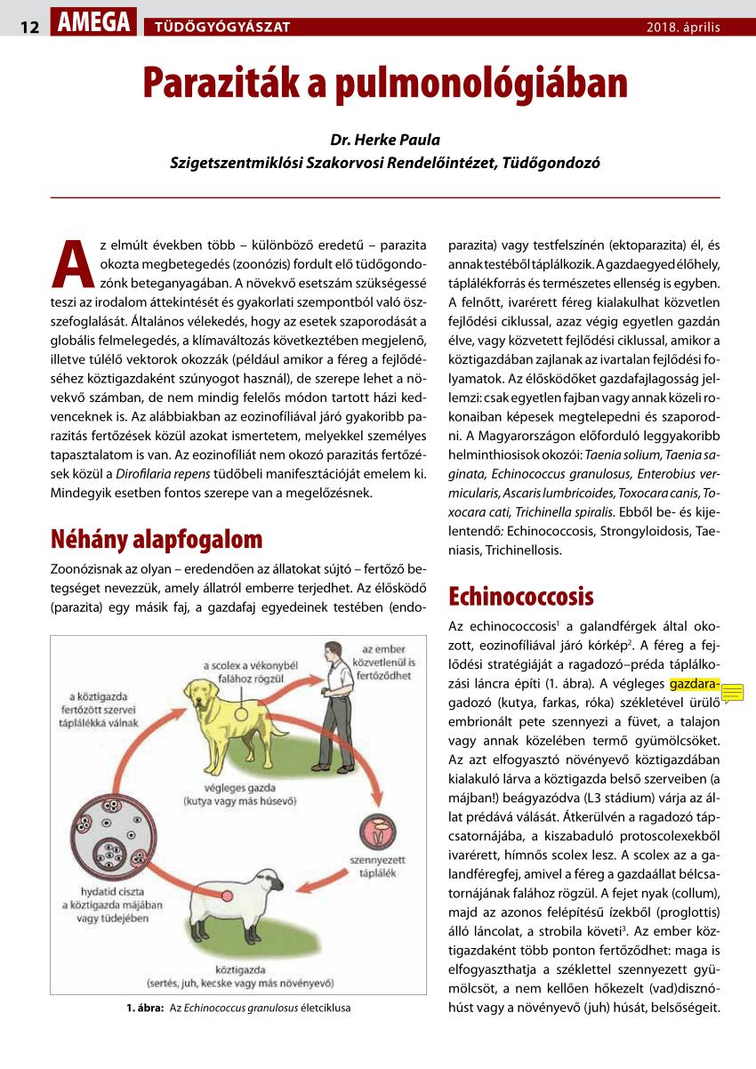 mik az ideiglenes paraziták megszabadulni a fű parazitáktól