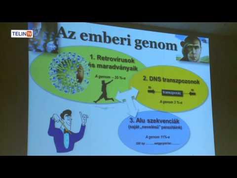 protozoon paraziták az emberek kezelésében parazitáktól a legjobban