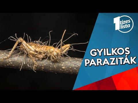 a helmintákra való felkészülésről paraziták a területeken