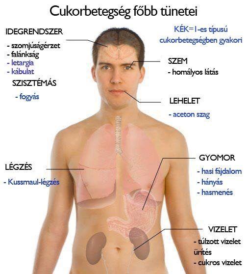 szájszag anyagcsere