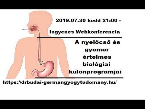 készítmények a gyomor számára a rossz leheletre)