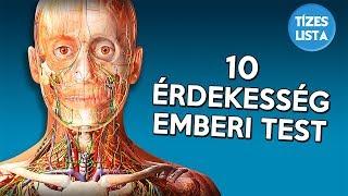 hány gömbféreg élhet az emberi testben)