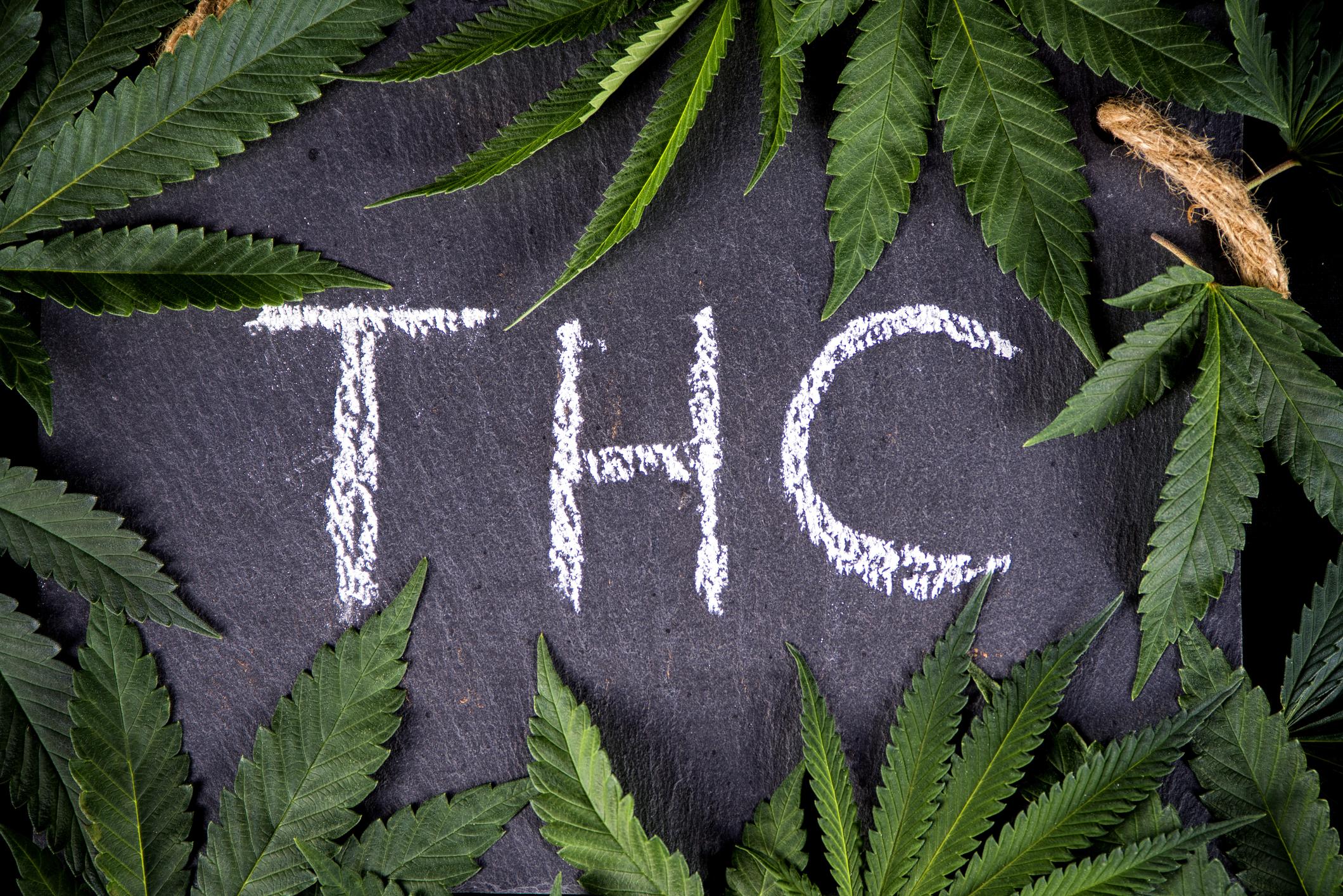 marihuána és paraziták a legújabb gyógyszerek a helminták számára