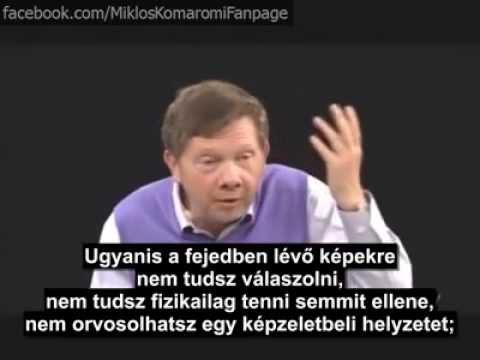 félelem és paraziták)