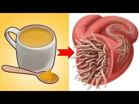 meddig élhetnek pinwormok az emberi testben