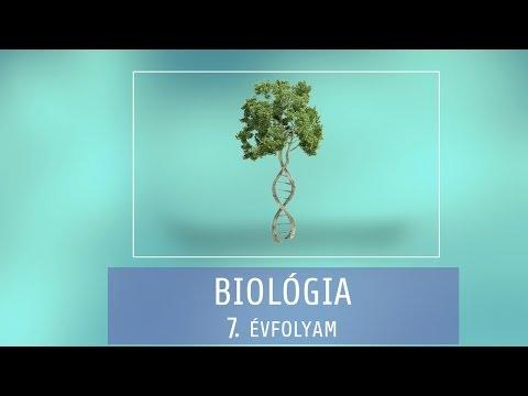 tajga gyógynövények parazitáktól mik a gömbférgek és hogyan kell kezelni őket