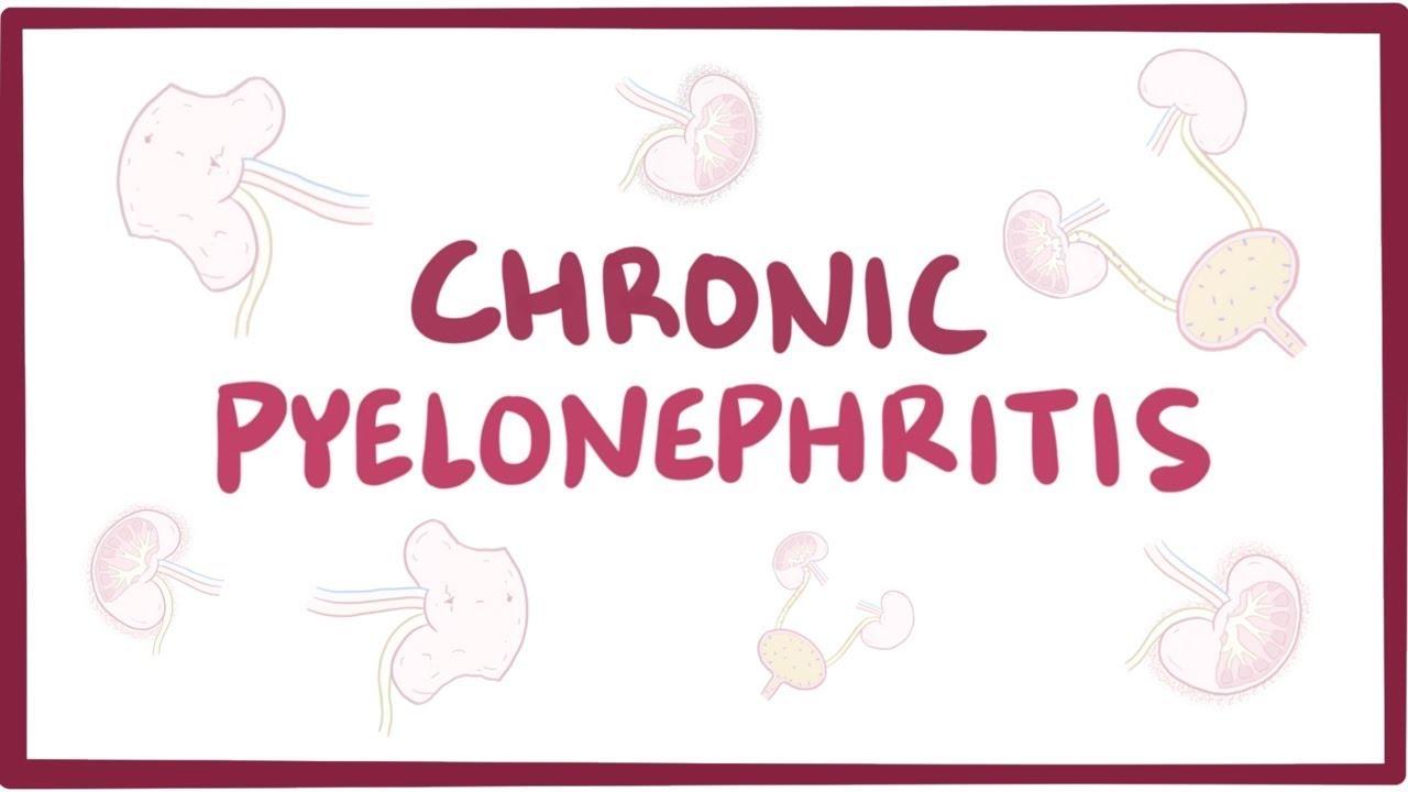 pyelonephritis és paraziták