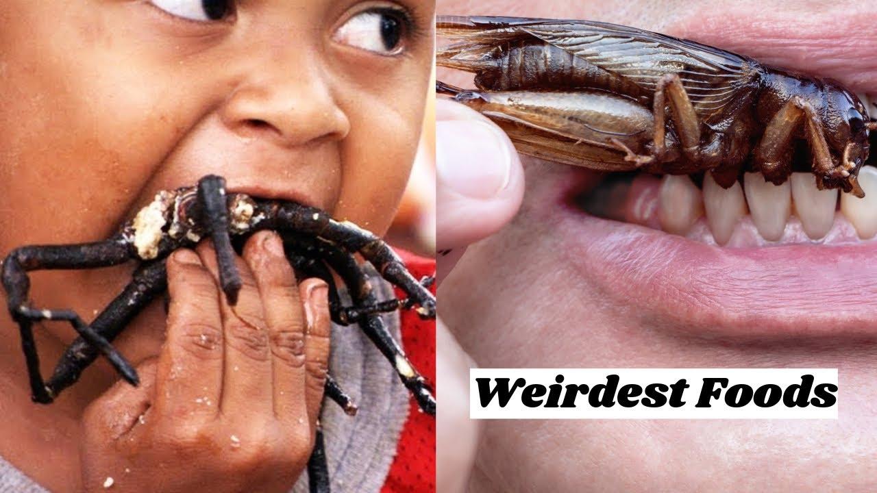 hogy milyen paraziták élnek imádkozó köpenyekben