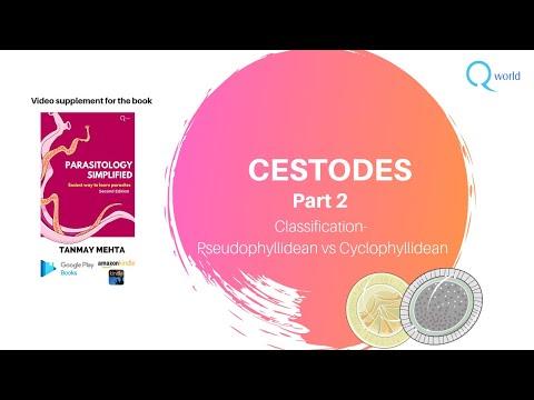 Cestodes paraziták de l homme. Uploaded by