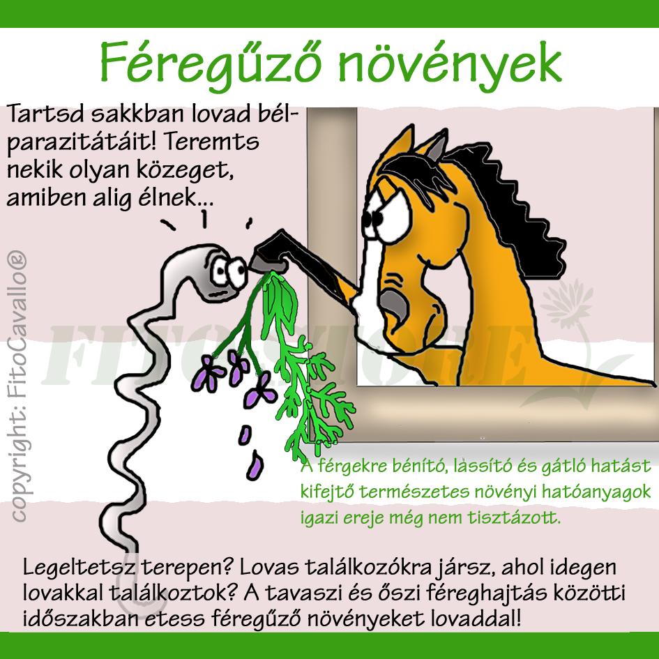 elűzi a parazitákat)