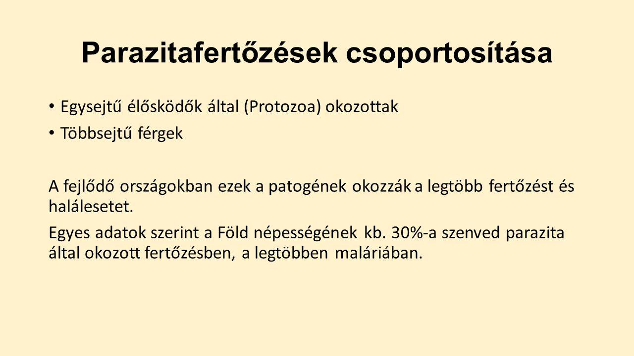 Teljes endokrin rendszer vizsgálat és parazitairtás. - 72%-os kupon · Maitalea-immobilien.hu