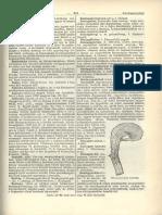 vélemények orvosság a pinworms felnőtteknél mennyi giardiasis kezelik