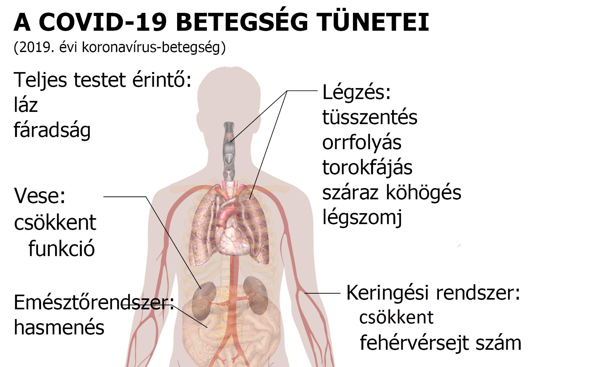 paraziták által okozott testkárosodás tünetei